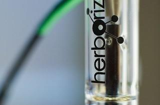 Inyector de aire caliente Herborizer
