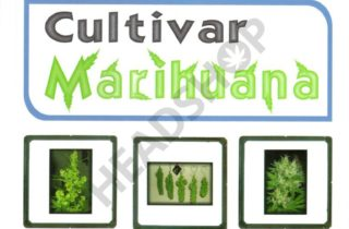 Potada del libro Cultivar Marihuana